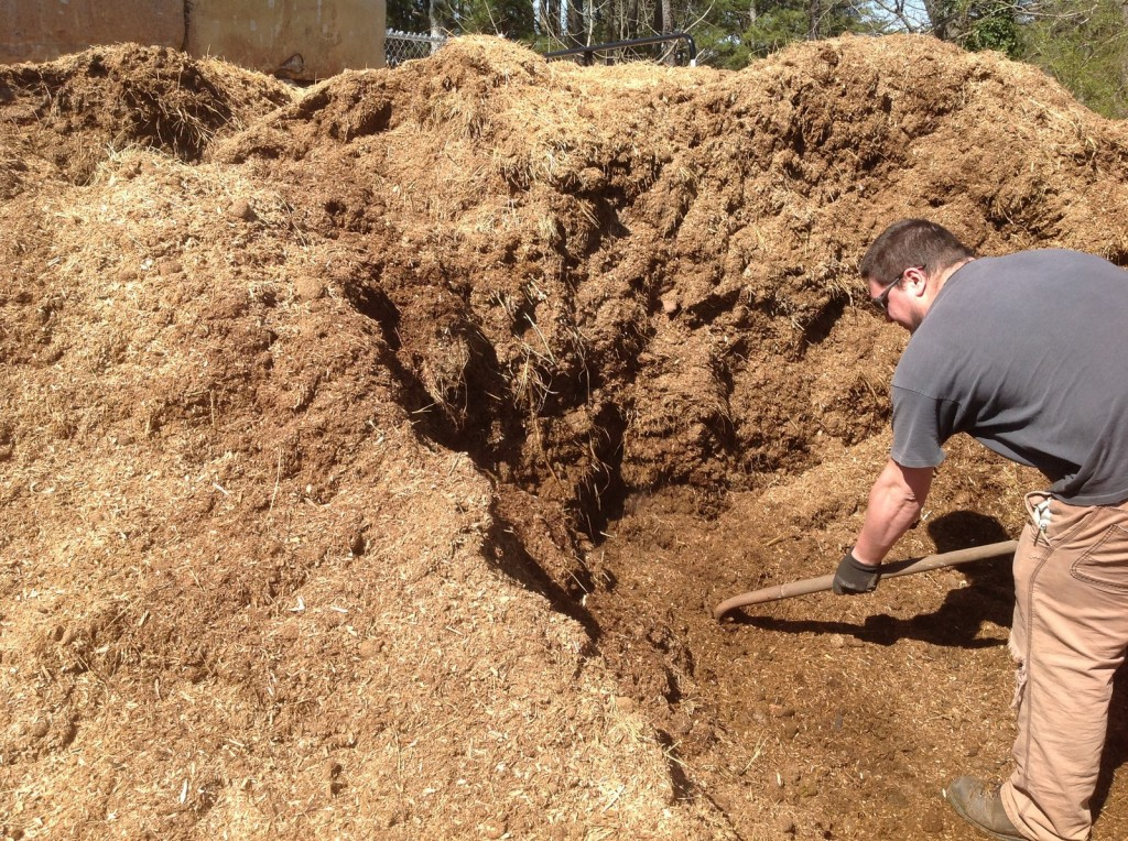 [compost] 1 1