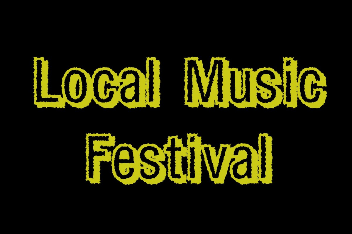 LOCAL MUSIC FESTIVAL: Next Sat 6/28/14: BUMMER SUMMER 2014