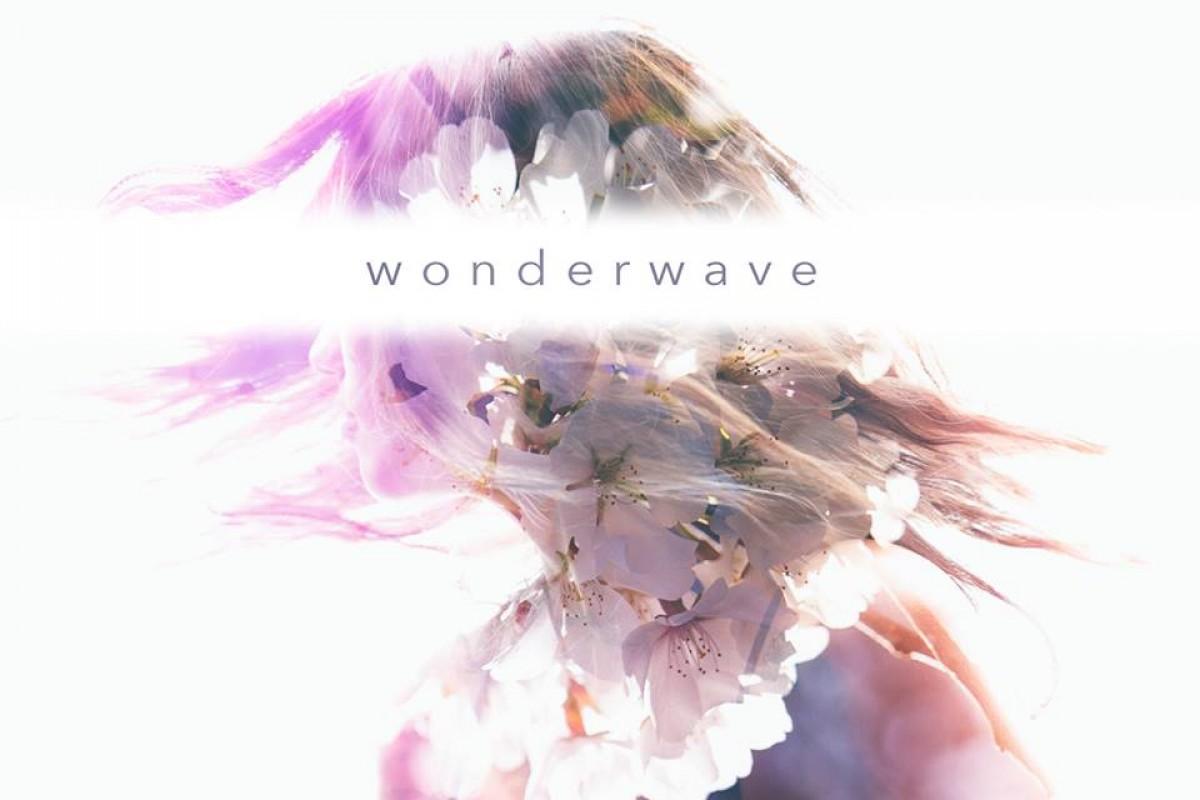 "FREE DOWNLOAD :: ""Wonderwave"" from Atlanta band Fake Flowers"