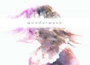 """""""wonderwave"""" cover by fake flowers"""