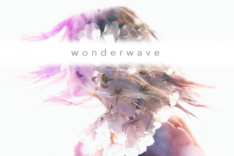"FREE DOWNLOAD :: ""Wonderwave"" from Atlanta band Fake Flowers"