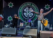 flogging molly shaky knees 2015 5