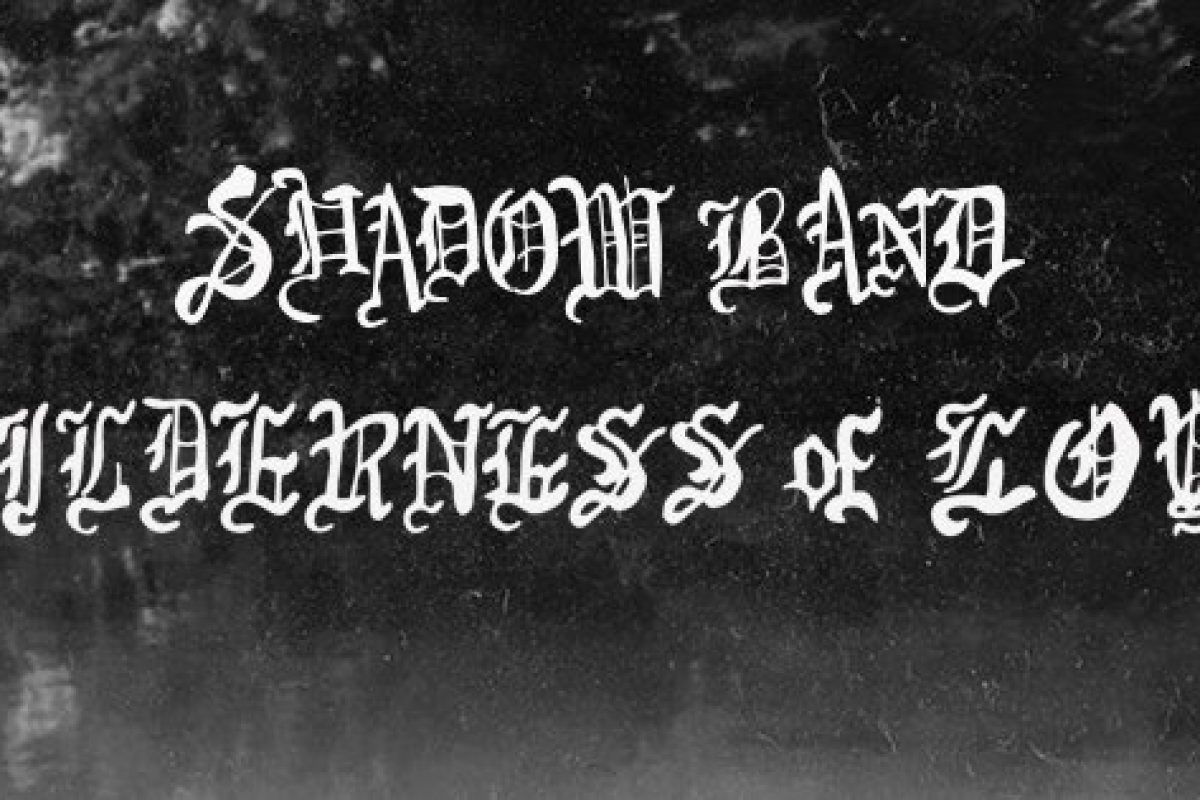 "STREAM AND BUY :: new album ""Wilderness of Love"" by Shadow Band (Philly) – headlining 529 in EAV on Thur 3/9/17 + Official Music Video"